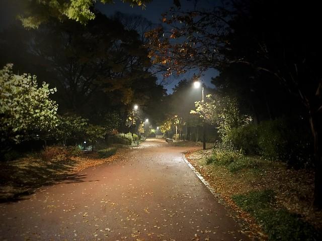 안개낀 장충단공원