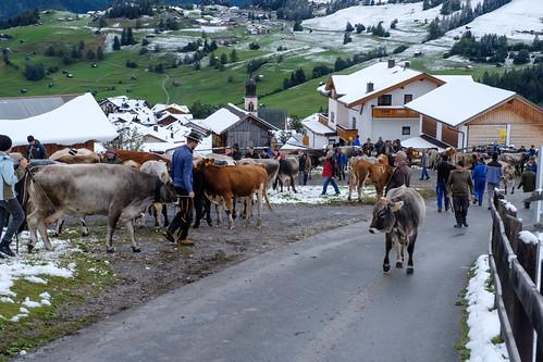 2020 Ladis Tirol-83.jpg