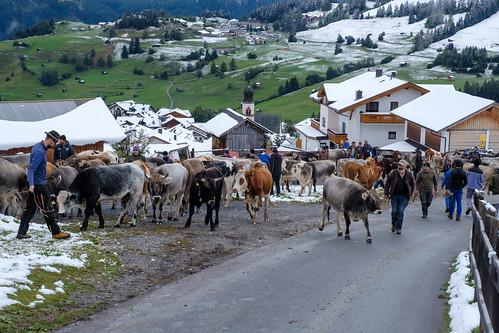 2020 Ladis Tirol-82.jpg