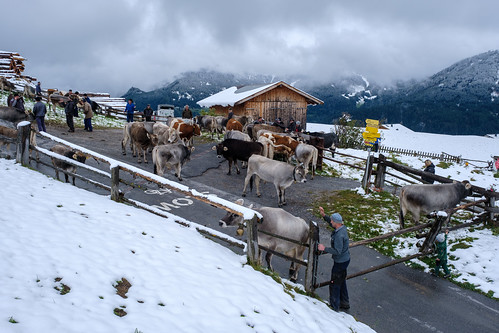 2020 Ladis Tirol-84.jpg