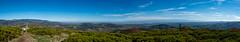 DSCF7591-Panorama