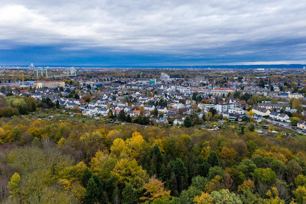 Natur vor deutscher Großstadt: Botanischer Garten in Herbstfarben, am Kölner Grüngürtel neben dem Stadtleben