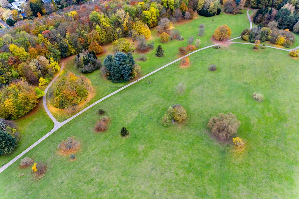Drohnenaufnahme von Herbstbäumen in bunten Farben im Forstbotanischen Garten und Friedenswald in Köln