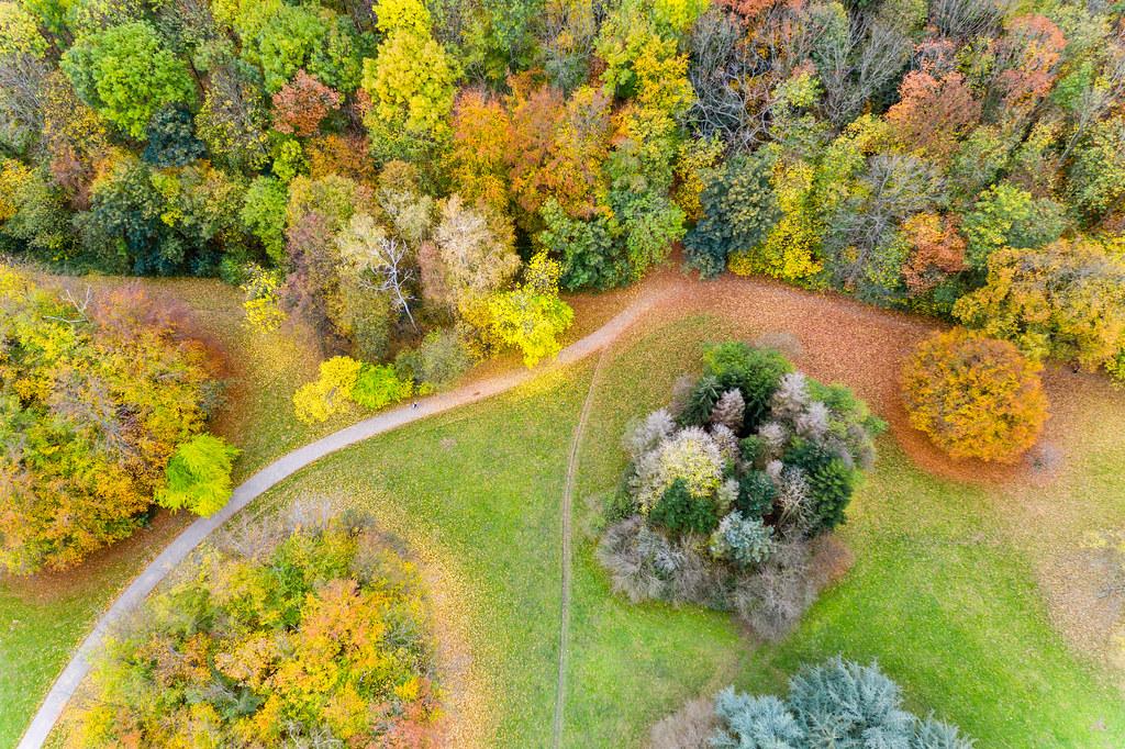 Aktivitäten im Herbst: Luftbild zeigt Parkanlage, umgeben von farbenfrohen Laubblättern und Waldstück im Kölner Forstbotanischen Garten
