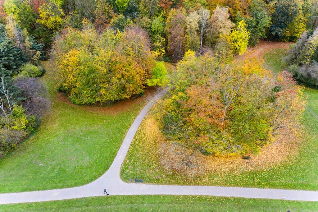 Frau mit Hund spaziert im Kölner Park