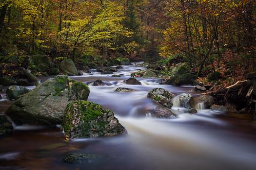Autumn river (Long exposure)