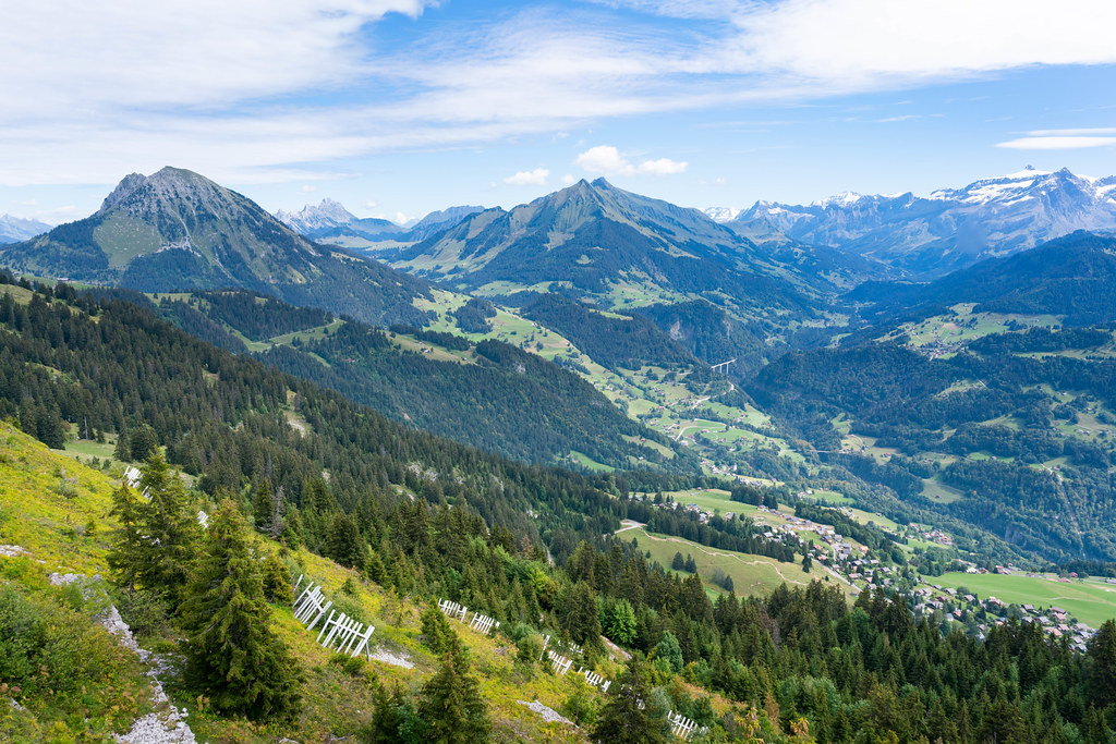 Mountains in south Switzerland with shape peaks and pine trees growing on the slopes
