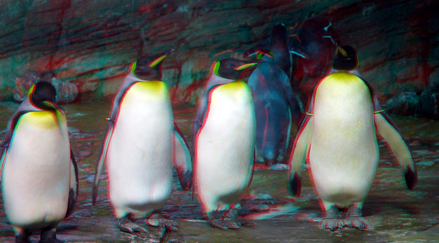 Photo:Oceanium Blijdorp Zoo Rotterdam 3D By wim hoppenbrouwers