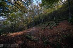 Parco monte Cucco, giro delle 4 valli