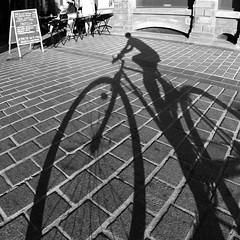 Vélo dans le centre de Lille