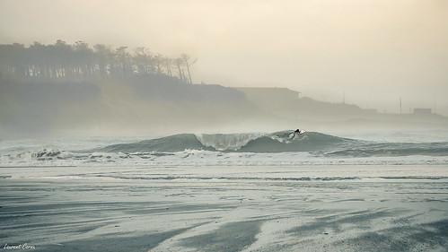 Prendre la Vague/Catch the Wave