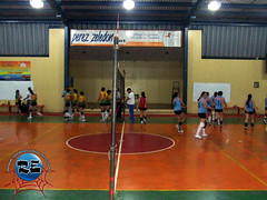 Festival Volleyball PZ 2011