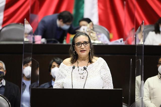 04/11/2020 Tribuna Dip. Rosalva Valencia Cruz