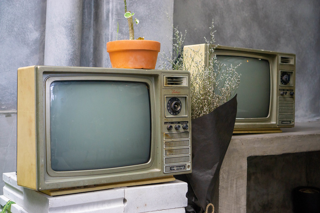 Two Retro Television with Plants as Vintage Cafe Decoration
