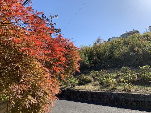 Photo:Kohan in Higashiyamato-shi By Mikhail Kotykhov