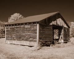 Barn~1030545ism