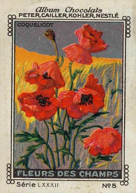 Photo:sluitzegelalbum chocolats pm 1920 pg 88 fleurs vivaces ill 5 By janwillemsen