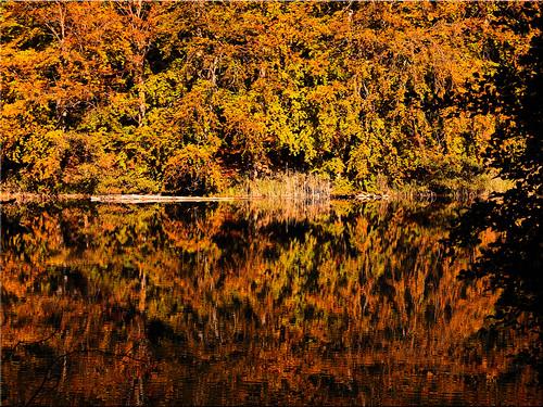 Autumn reflections on the Uklei lake