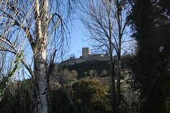 Castelo de Leiria, Igreja de Santa Maria da Pena e Colegiada (Ruínas)