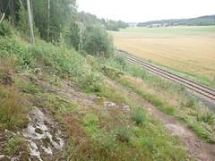 Lysløypa Trostebekk hillclimb, Prestegårdsskogen, Askim