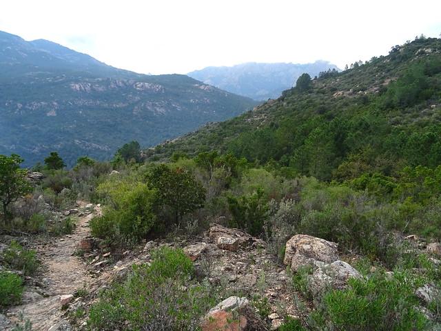 Photo:Corse2011070074 By Corse sauvage