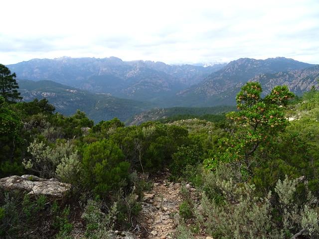 Photo:Corse2011070041 By Corse sauvage