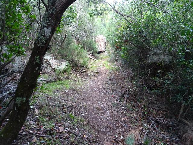 Photo:Corse2011070070 By Corse sauvage
