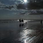 Piha Dreams  (In Explore - GF670 / MF Pro400h)