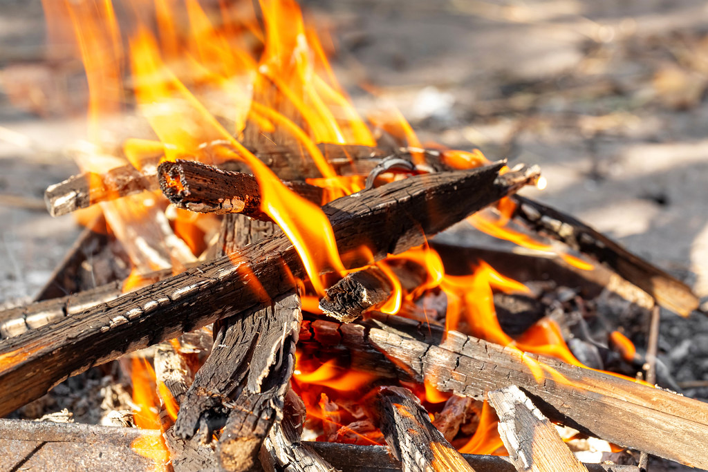 A fire burns with firewood