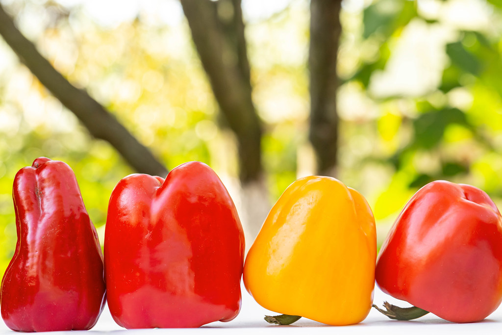 Three red and one yellow bell peppers on a nature background