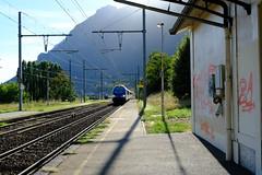TER train @ Gare de Frontenex
