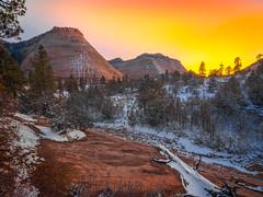 The Checkerboard Mesa: Zion National Park Autumn Colors Fall Foliage Snow Fuji GFX100 Fine Art Landscape Photography! Utah Autumn Snow! Elliot McGucken Master Medium Format Nature Photographer Fuji GFX 100 & Fujifilm Fujinon GF Lens!