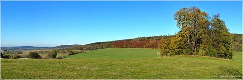 Vier Linden bei Rehnsdorf