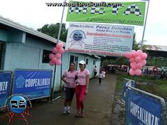 Carrera contra el cáncer de mama 2013