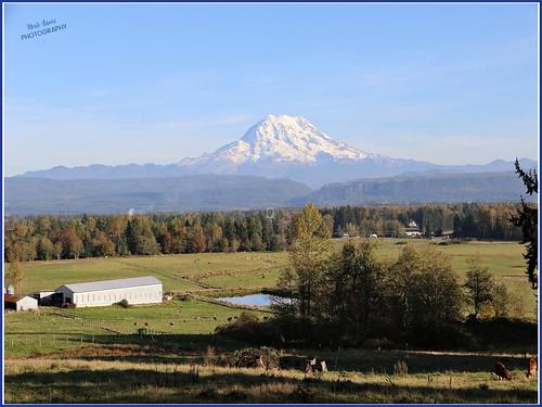 Mt Rainier from Graham