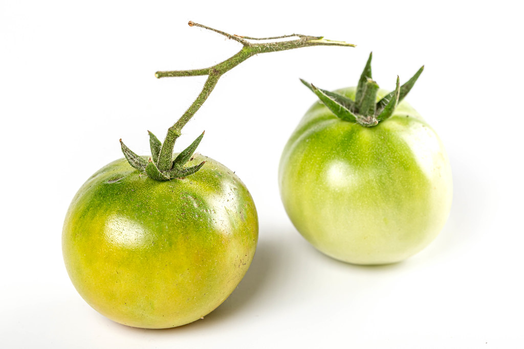 Two fresh green tomatoes with a branch