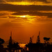 Habor at Sunset