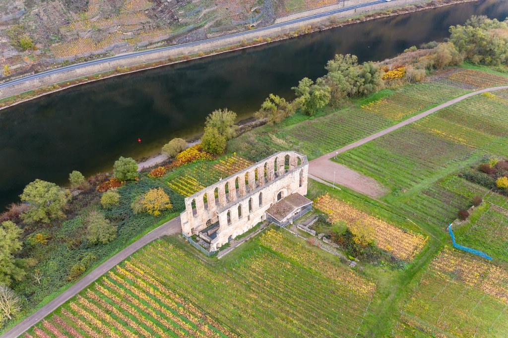 Klosterruine Stuben umgeben von Weinbau-Feldern an der Mosel aus der Luft fotografiert