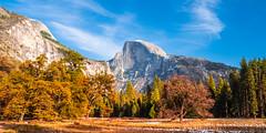 Cooks Meadow Elm Yosemite National Park Autumn Colors Fall Foliage Snow Fuji GFX100 Fine Art Landscape Photography! California Fall Colors! Elliot McGucken Master Medium Format Landscape Nature Photography Fuji GFX 100 & Fujifilm Fujinon GF Lens!