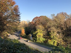 Rock Creek Parkway, November afternoon view from Rose Park trail, Georgetown, Washington, D.C.