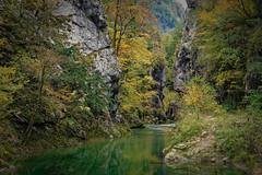 Isère - Massif de la Chartreuse