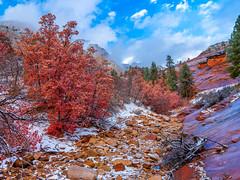 East Side Wash Zion National Park Autumn Colors Fall Foliage First Snow Fuji GFX100 Fine Art Landscape Photography! Utah Autumn Snow! Elliot McGucken Master Medium Format Nature Photographer Fuji GFX 100 & Fujifilm Fujinon GF Lens!