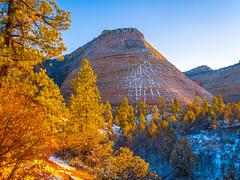 Zion National Park Autumn Colors Fall Foliage First Snow Fuji GFX100 Fine Art Landscape Photography! Utah Autumn Snow! Elliot McGucken Master Medium Format Nature Photographer Fuji GFX 100 & Fujinon FUJIFILM GF 45-100mm f/4 R LM OIS WR Lens