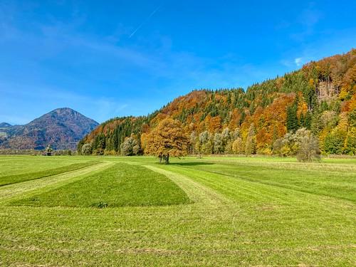 Autumnal landscape near Niederndorf in Tyrol, Austria