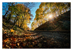 Glorious Fall Morning