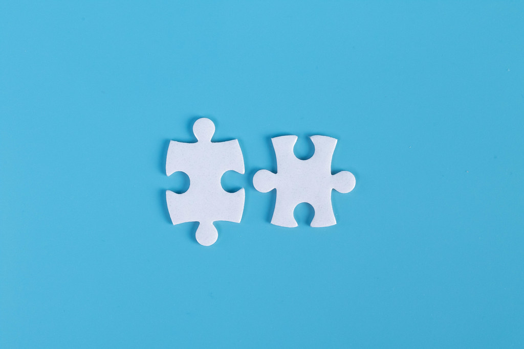 Two pieces of jigsaw puzzle