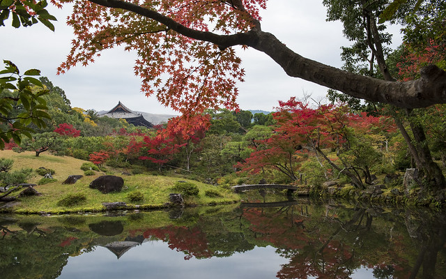 Photo:Autumn in Nara 奈良の秋 By Patrick Vierthaler (using albums)