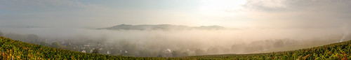 Lost in the mist {Explore}