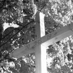 Fresh Cross  (Retina IIIC / expired Astrum FN-64)