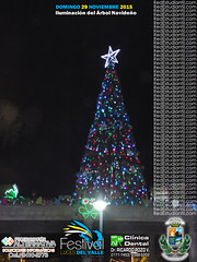 Árbol Navidad FLV 2015